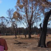 Unicorn Park Bushfire